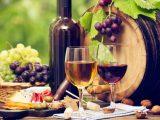 Wine Fest Vallarta